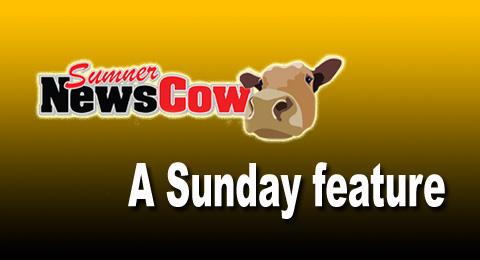 Sunday feature