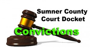 Sumner Court docket convictions