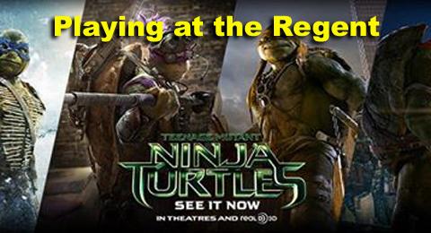 Wellington Regent Ninja Turtle