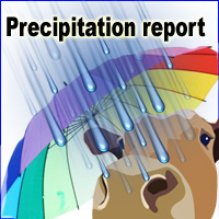 Newscow precipation report