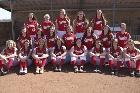 2015 Wellington girls softball team.