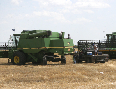 Zeka Farms Inc. get stated with the 2015 Wheat Harvest.