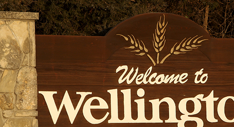 Wellington sign column