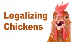 Legalizing chickens