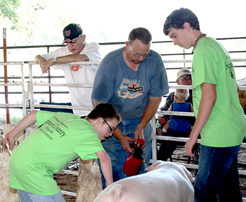 Contestants participating during the Sumner County Fair.