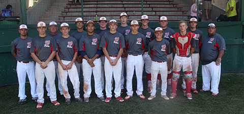 Members of the Wellington Babe Ruth 16-18 All Stars.