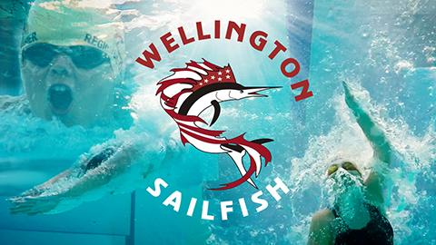 Wellington Sailfish graphic