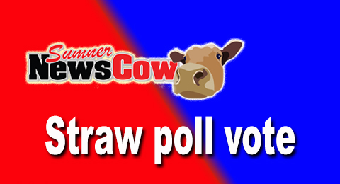 The official unofficial Sumner Newscow Straw Poll vote