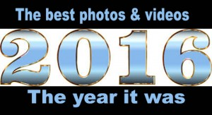 2016-best-photos-and-videos