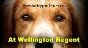 Dog's Purpose at Wellington Regent